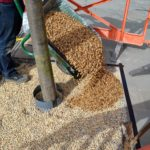 Pouring resin bound into tree pit