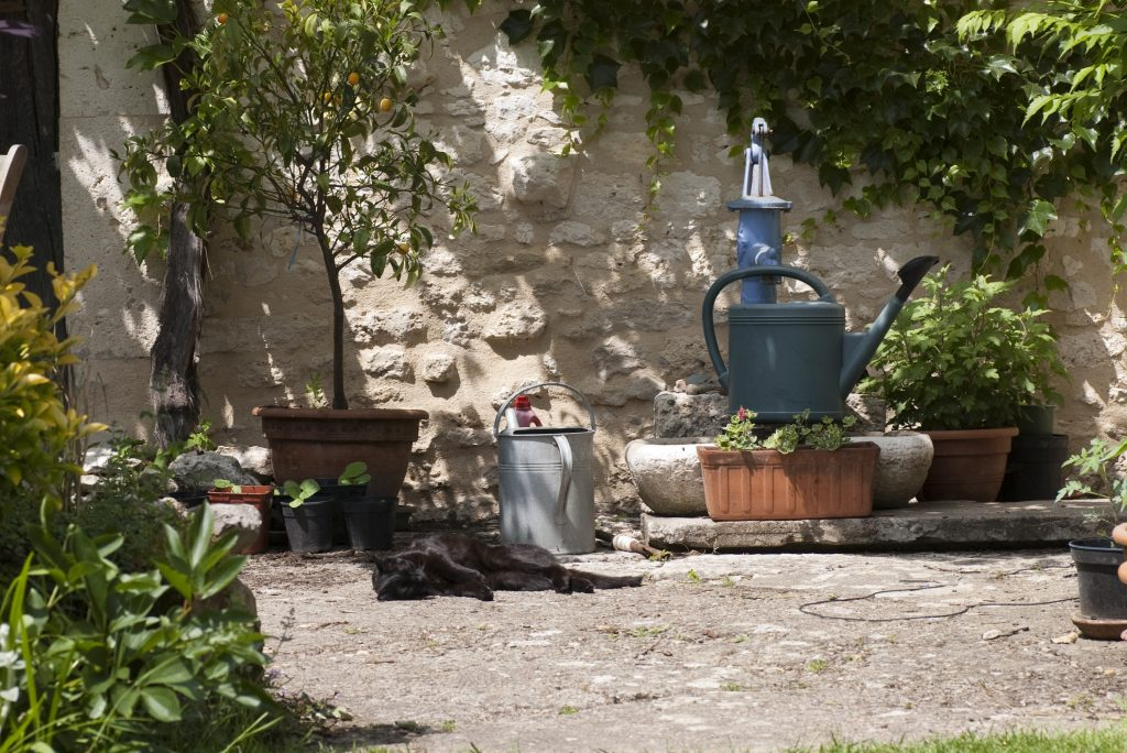 Preparing Your Garden For Spring Here Are Six Useful