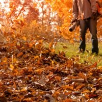 Get the Most Out of Your Leaf Blower throughout the year