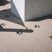 Stand out paving ideas…..